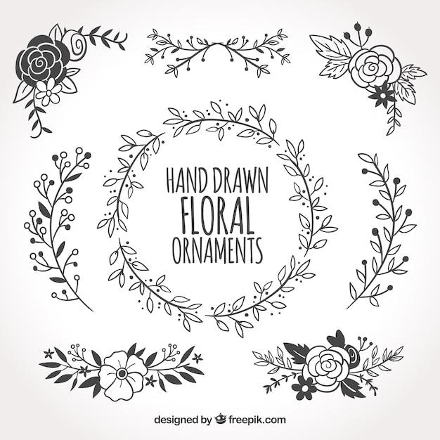 Coleção de ornamentos florais desenhados à mão Vetor grátis