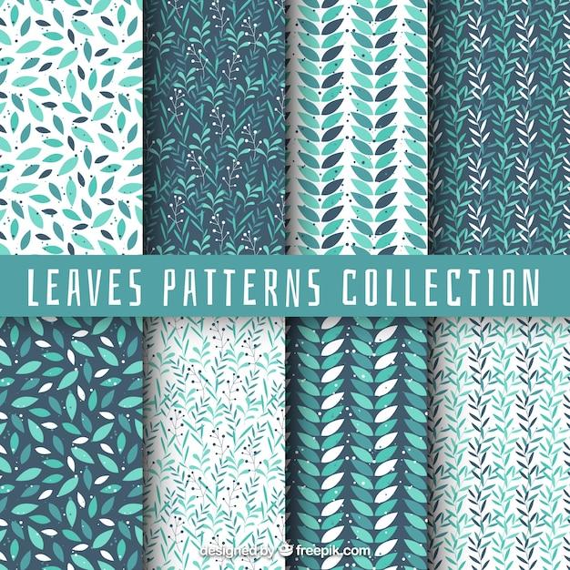 Coleção de padrão com folhas Vetor grátis