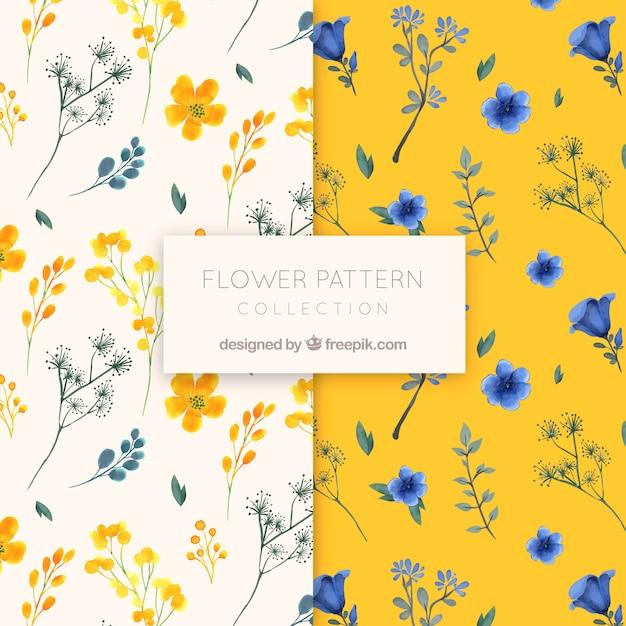 Coleção de padrão de flor em estilo aquarela Vetor grátis
