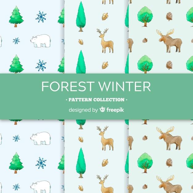 Coleção de padrão de inverno em aquarela Vetor grátis