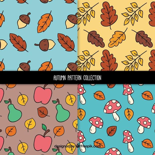 Coleção de padrões de outono com folhas e frutos Vetor grátis