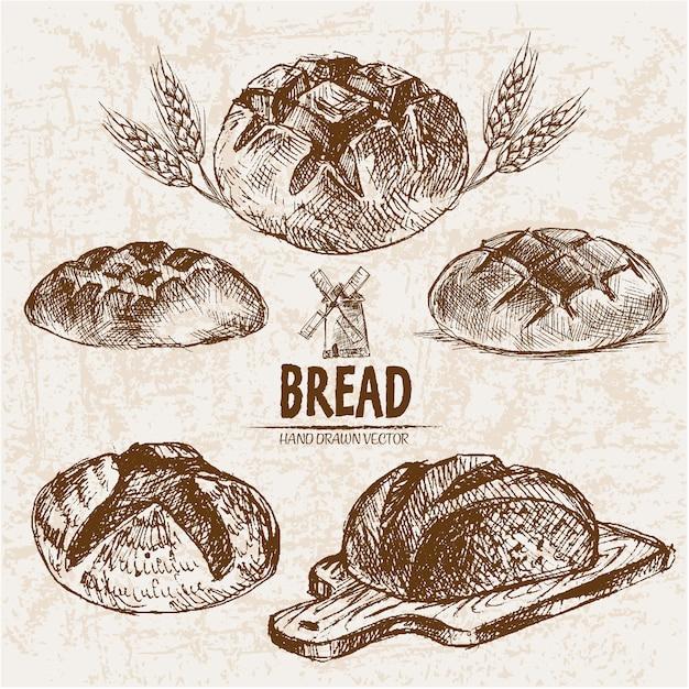 Coleção de pão arredondado Vetor Premium