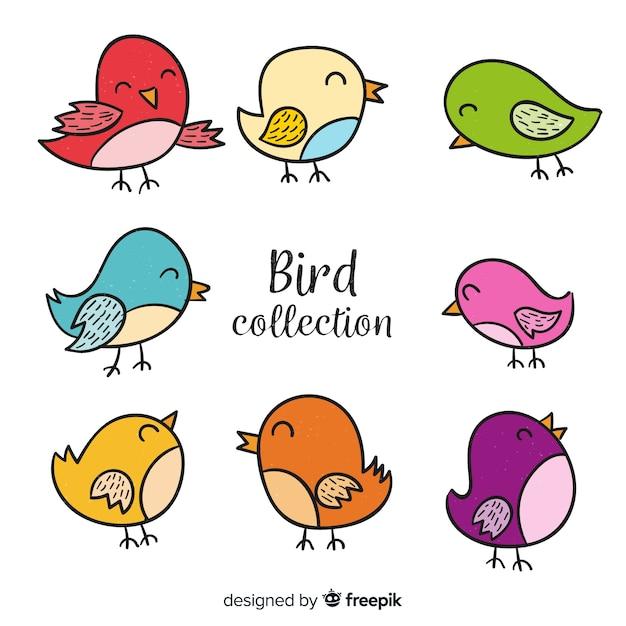 Coleção de pássaro colorido mão desenhada Vetor grátis