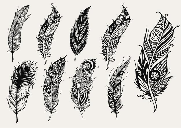 Coleção de penas desenhadas à mão Vetor grátis
