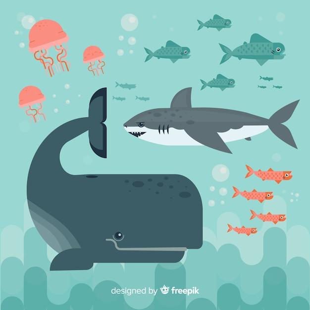 Coleção de personagem de vida marinha plana Vetor grátis