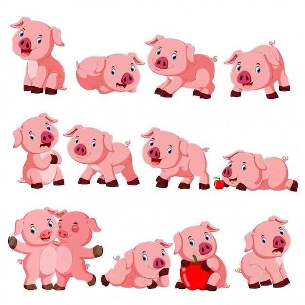 Coleção de porco fofo com vários posando Vetor Premium