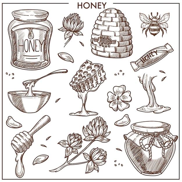 Coleção de produtos de mel doce Vetor Premium