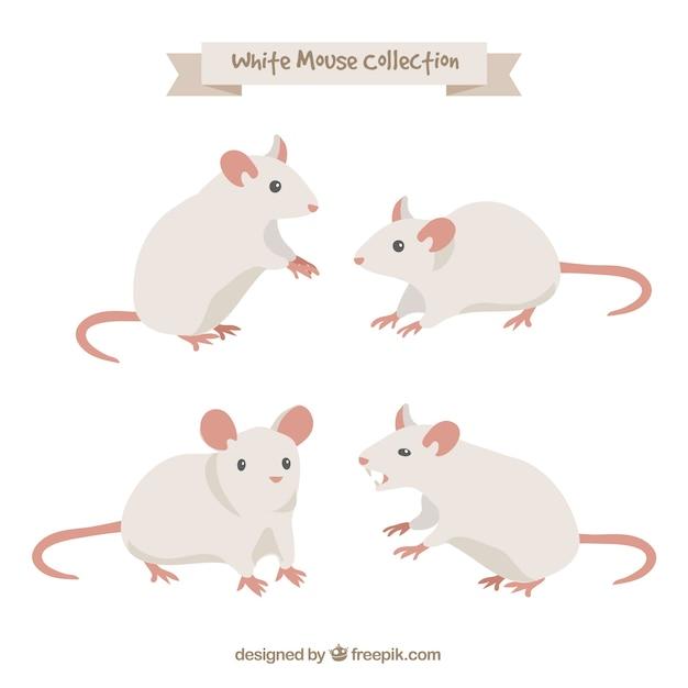 Coleção de ratos desenhados mão Vetor grátis