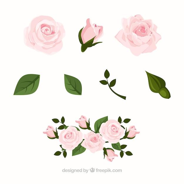 Coleção de rosas em design realista Vetor grátis
