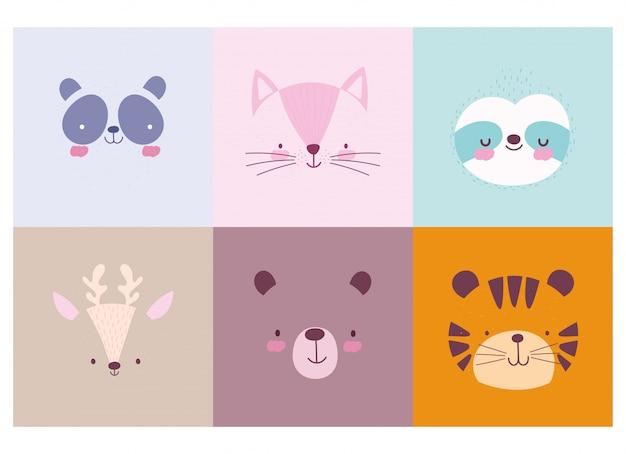 Coleção de rostos de personagens de animais fofos dos desenhos animados Vetor Premium