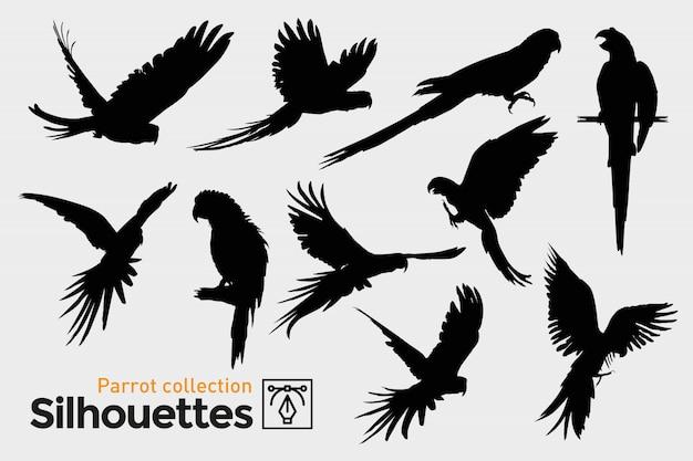 Coleção de silhuetas de papagaio. pássaros exóticos. Vetor Premium
