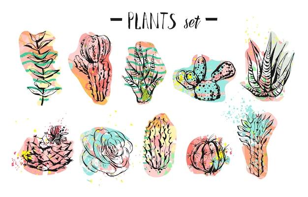 Coleção de suculentas, cactos e plantas criativa desenhada à mão Vetor Premium