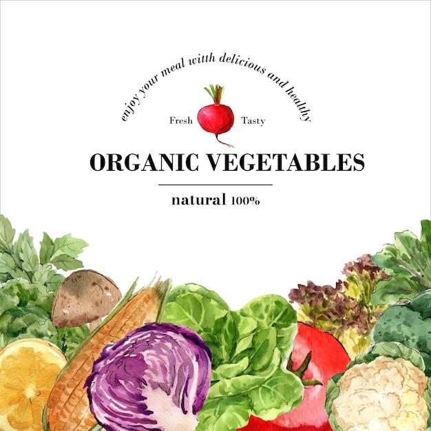Coleção de tinta aquarela vegetal. comida fresca decoração orgânica saudável ilustração de anúncio Vetor grátis