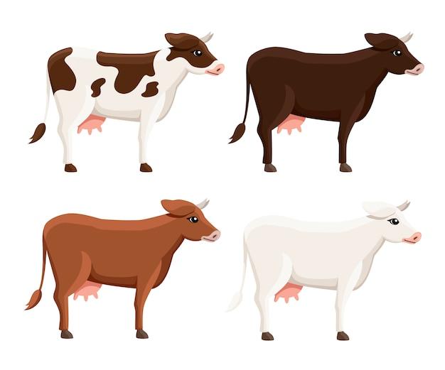 Coleção de vacas fofas. animal doméstico de fazenda. animal de estilo. ilustração em fundo branco Vetor Premium