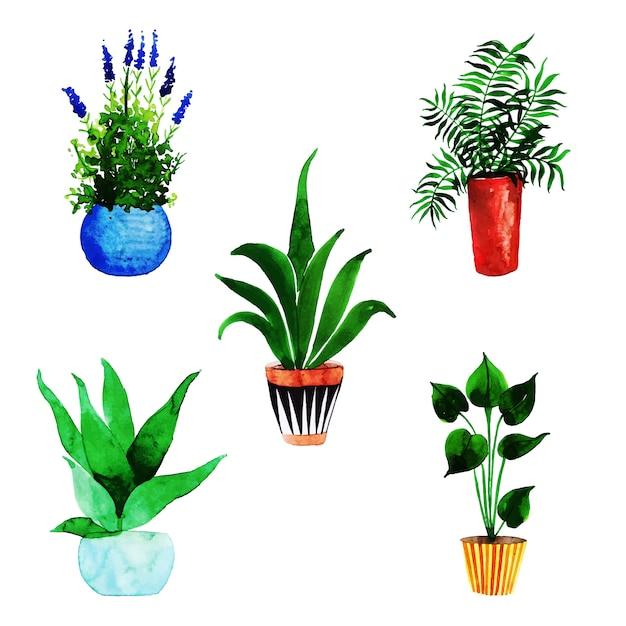 Coleção de vasos de flores em aquarela Vetor Premium