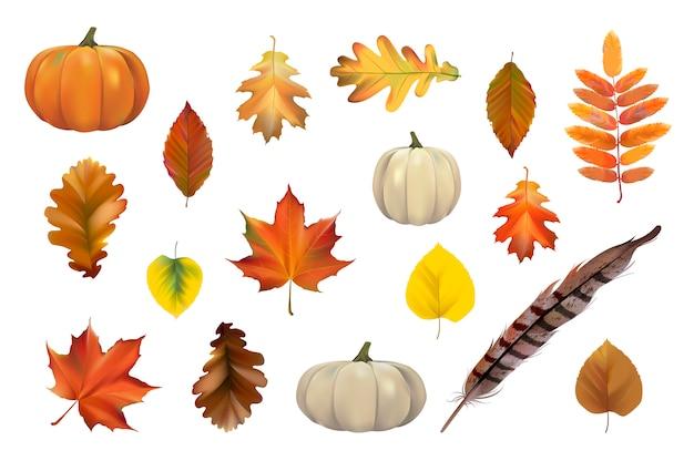 Coleção de vetor de folhas de outono Vetor grátis