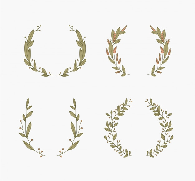 Coleção de vetores de molduras e bordas florais. Vetor Premium