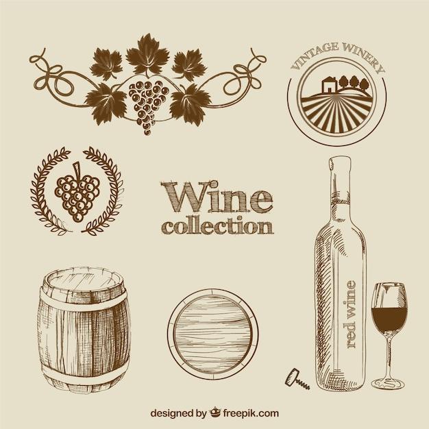 Coleção do vinho no estilo desenhado mão Vetor grátis