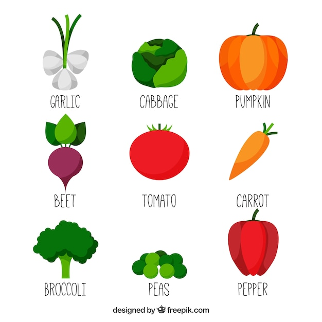 Coleção dos vegetais Vetor grátis