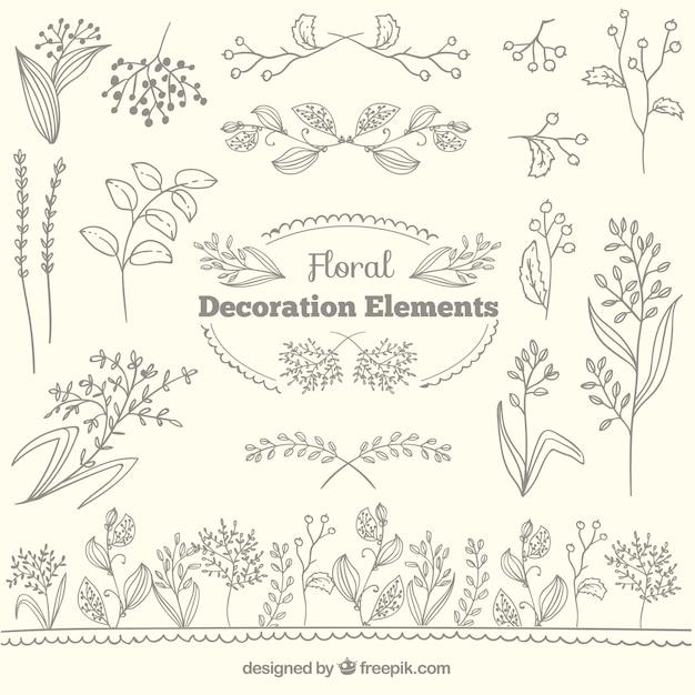 Coleção floral elementos de decoração Vetor grátis