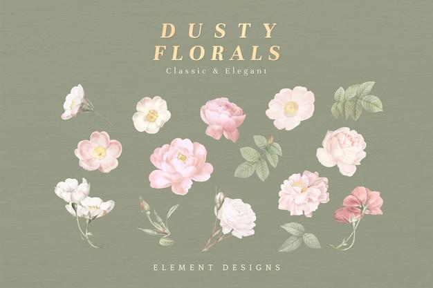 Coleção floral empoeirada Vetor grátis