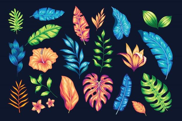 Coleção floral linda mão vintage desenhada Vetor Premium