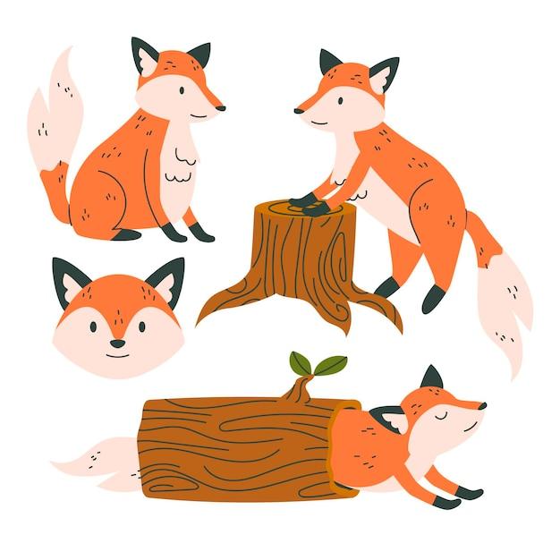 Coleção fox desenhada Vetor grátis