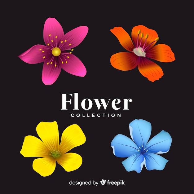Coleção linda flor com design realista Vetor grátis