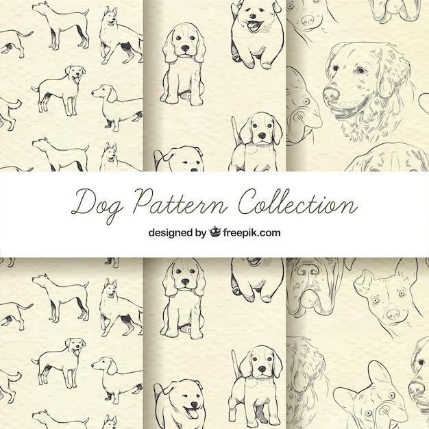 Coleção sketchy dog pattern Vetor grátis