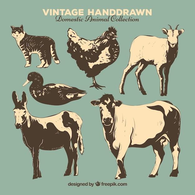 Coleção vintage de animais de fazenda desenhados a mão Vetor grátis