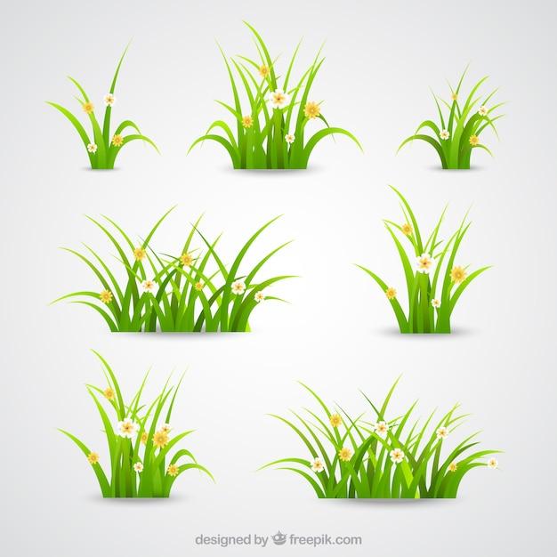 Coleta de grama verde Vetor grátis