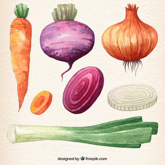 Coleta de vegetais aguarela Vetor grátis