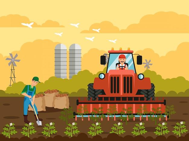 Colheita de batata em ilustração vetorial plana de campo Vetor Premium