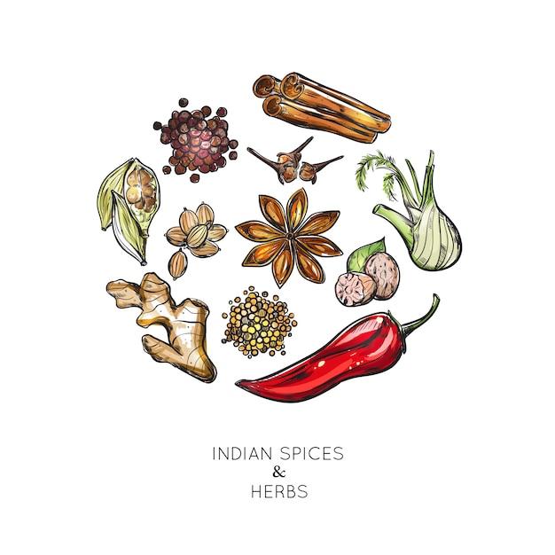 Composição de ervas especiarias indianas Vetor grátis
