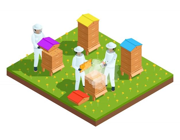 Composição isométrica de apicultura apicultura com agricultores e ilustração do vetor de colmeias de abelhas Vetor grátis
