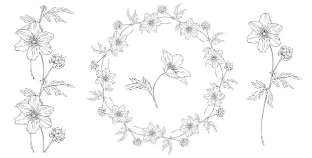 Composição preto e branco floral conjunto com flores de anêmona Vetor Premium