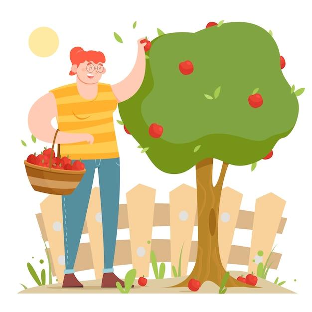 Conceito de agricultura biológica com mulher colhendo maçãs Vetor grátis