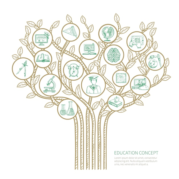 Conceito de árvore de educação com ilustração de vetor de símbolos de desenho de aprendizagem e graduação Vetor grátis