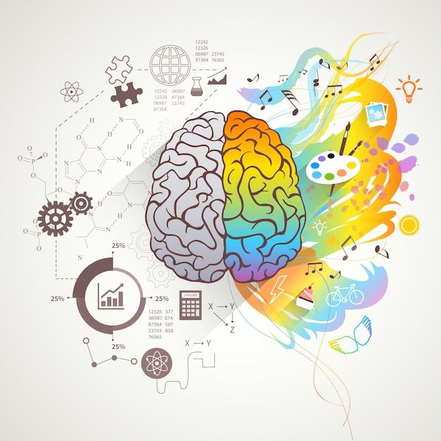 Conceito de cérebro direito esquerdo Vetor grátis