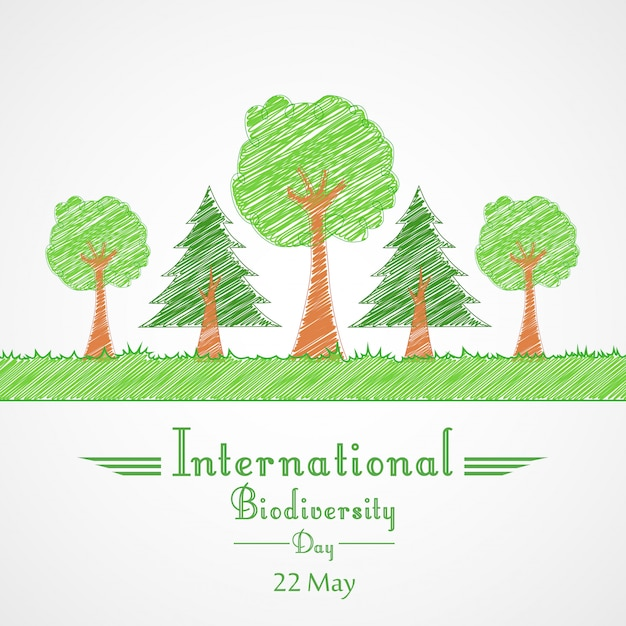Conceito de fundo internacional do dia da biodiversidade Vetor Premium