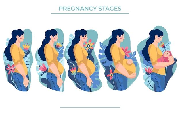 Conceito de ilustração de fases de gravidez Vetor Premium