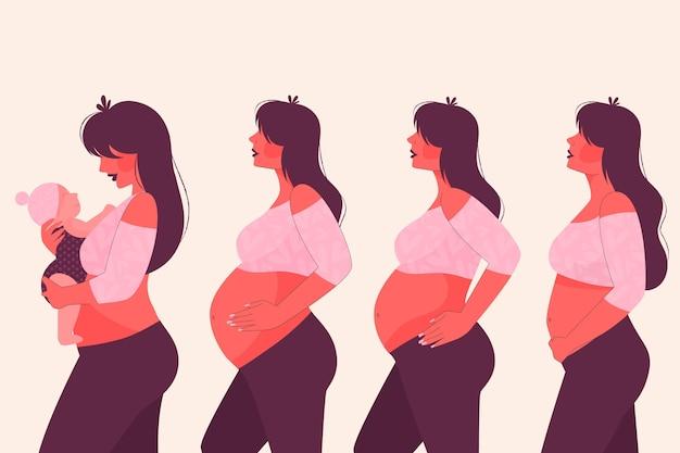 Conceito de ilustração de fases de gravidez Vetor grátis
