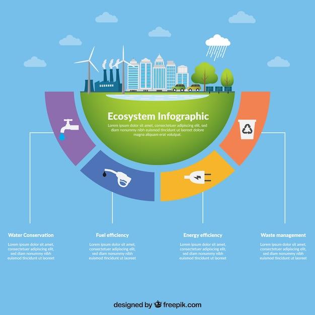 Conceito de infográfico ecossistema Vetor grátis