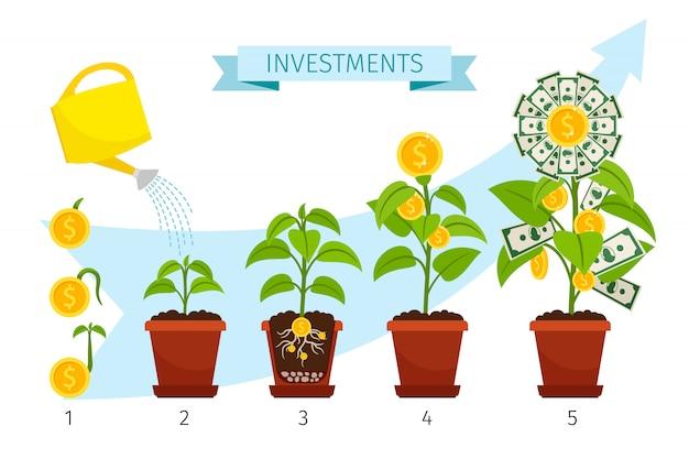 Conceito de processo de investimentos com crescimento de árvore de dinheiro Vetor Premium
