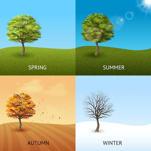 Conceito de quatro temporada definido com árvores no fundo do céu Vetor grátis