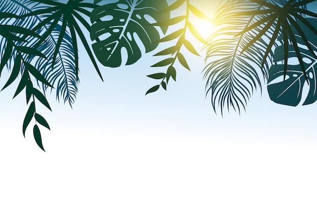 Conceito de verão de folhas tropicais com luz solar Vetor Premium