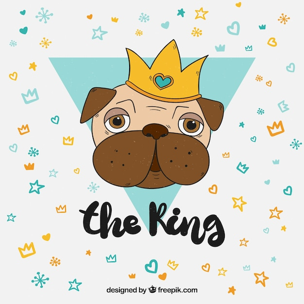 Conceito divertido com o rei dos pugs Vetor Premium