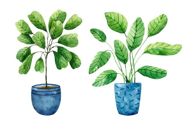 Conjunto aquarela de plantas de interior em vasos de flores azuis, isolado no fundo branco Vetor Premium