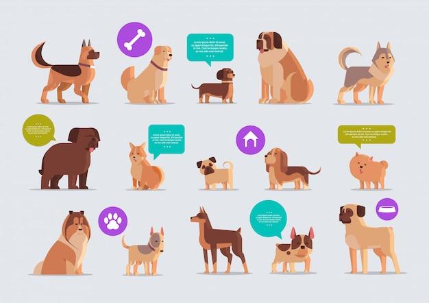 Conjunto cães de raça pura amigos humanos peludos animais de estimação em casa coleção conceito animais dos desenhos animados horizontal Vetor Premium