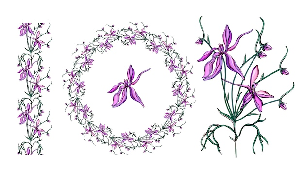 Conjunto com flores silvestres roxas delicadas. Vetor Premium